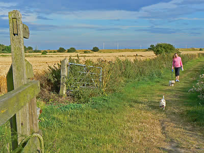 Orford Walking